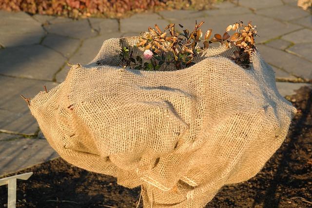 Plani-Décor-Conférence-Préparer votre jardin pour l'hiver